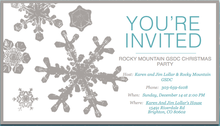 Christmas Party 2014 Invitation